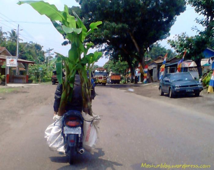 Grand Bawa Pohon Pisang