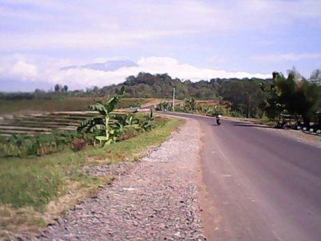 Jalur Gunung Tugel (9)