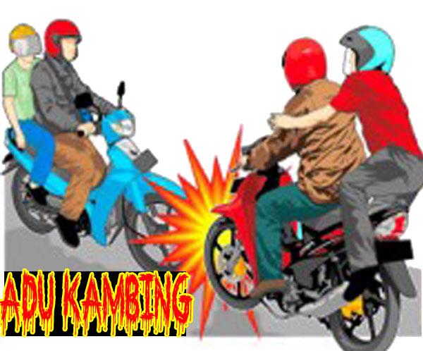 Adu Kambing Motor