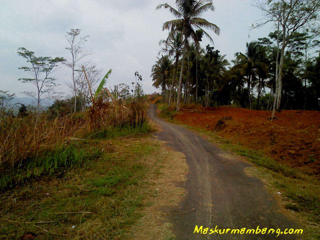 Pekaja - Wlahar Wetan 07