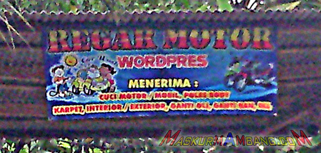 regar motor wordpres