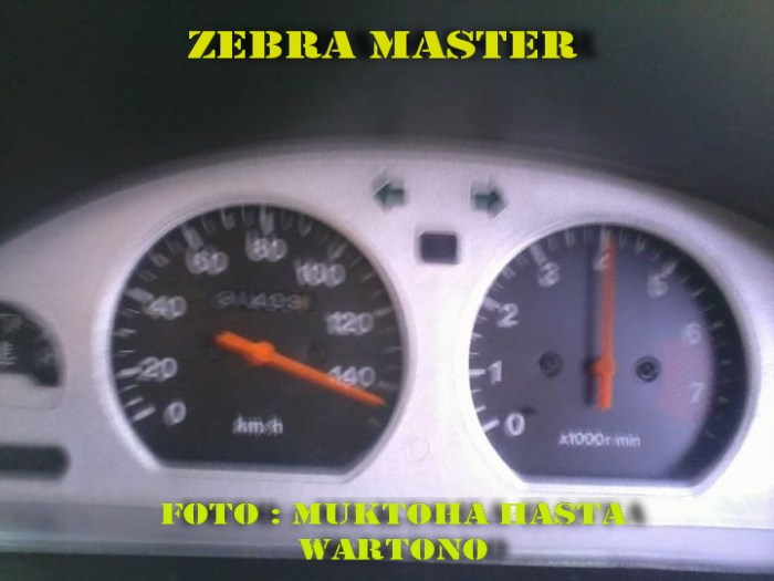Topspeed Zebra Mukhtoha Hasta