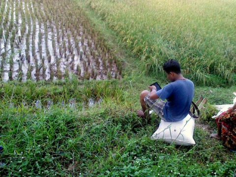 Main Tablet Di Sawah 3
