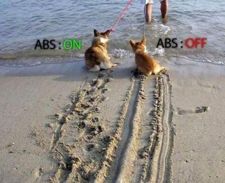 Rem ABS vs Non ABS