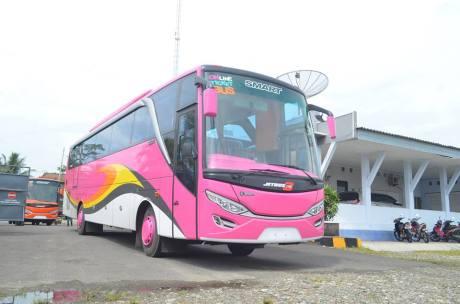 Bus efisiensi pinky