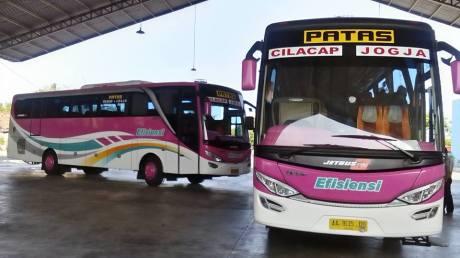 Bus efisiensi pinky2