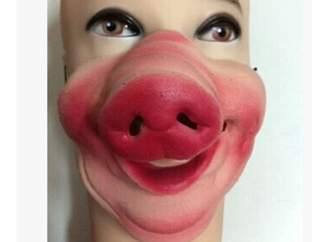 Masker Babi