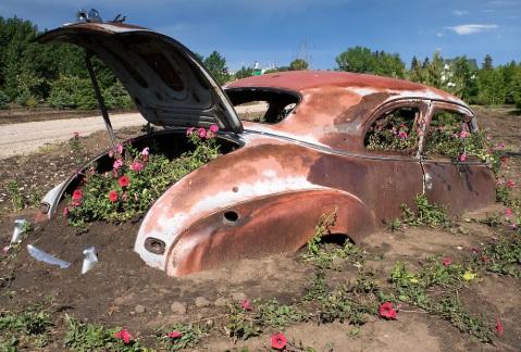 mobil tua jadi pot