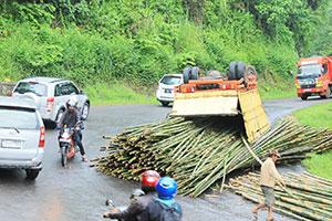 Truk Angkut Bambu 3 - terguling