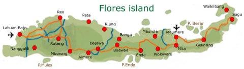 map-flores